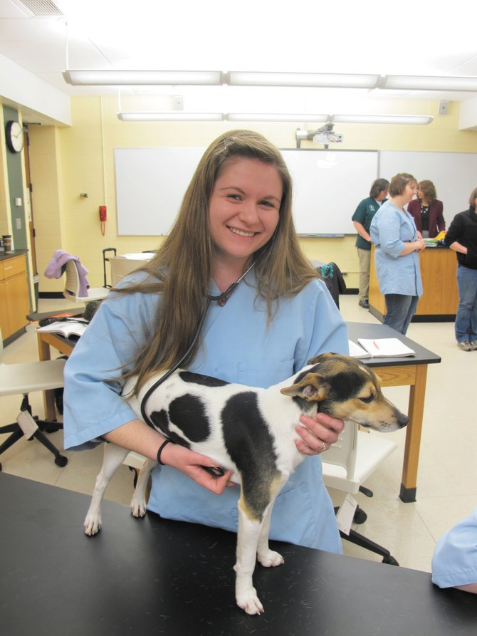 GCC Vet tech students acquire plenty of hands-on learning opportunities.