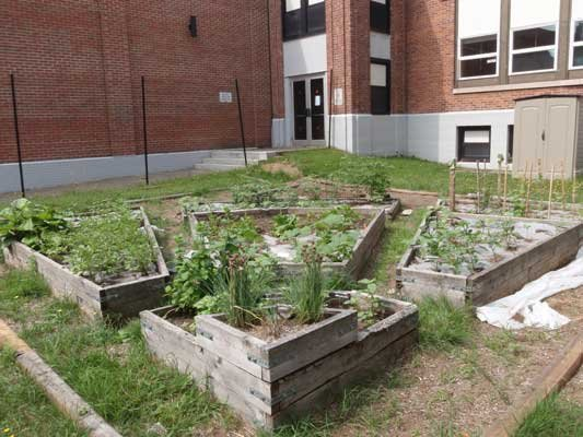  Long Lake Central School Corner Garden