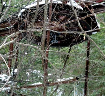 A rusty bullwheel from an old T-Bar at Otis Mountain is slowly being lost to an ever encroaching forest.