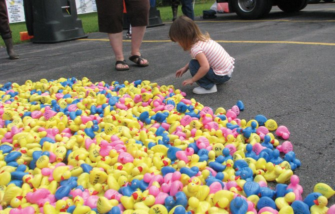 "A young spectator views all of the ducks who navigated Chittenango Creek in last year's""Don't Duck Hunger"" duck race fundraiser for the Bridgeport Food Pantry. This year's race will take place at 3 p.m. Saturday, Sept. 7."