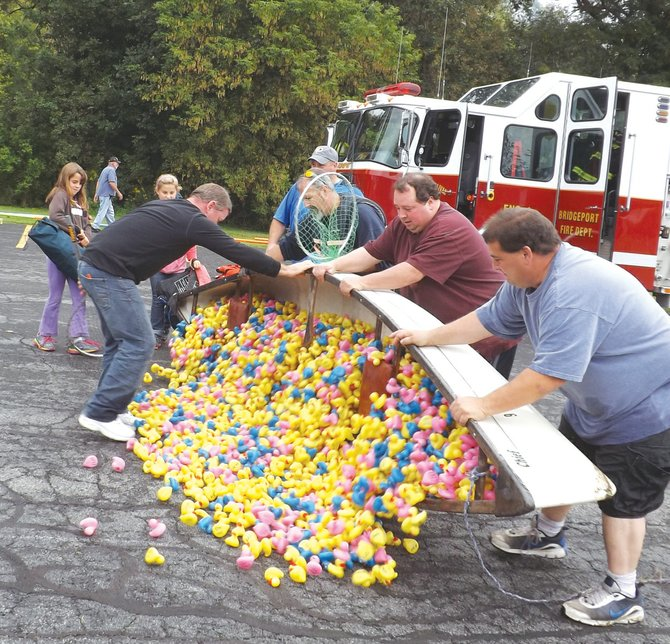 """The fifth annual """"Don't Duck Hunger"""" duck race was held this weekend to benefit the Bridgeport Food Pantry Saturday, Sept. 7.  Though this year's totals were not available at press time, the fundraiser, the pantry's largest every year, typically raises about $25,000. Pictured, volunteers dump the plastic ducks used in the race out onto the pavement in the parking lot behind St. Francis Church to dry after pulling them out of Chittenango Creek."""