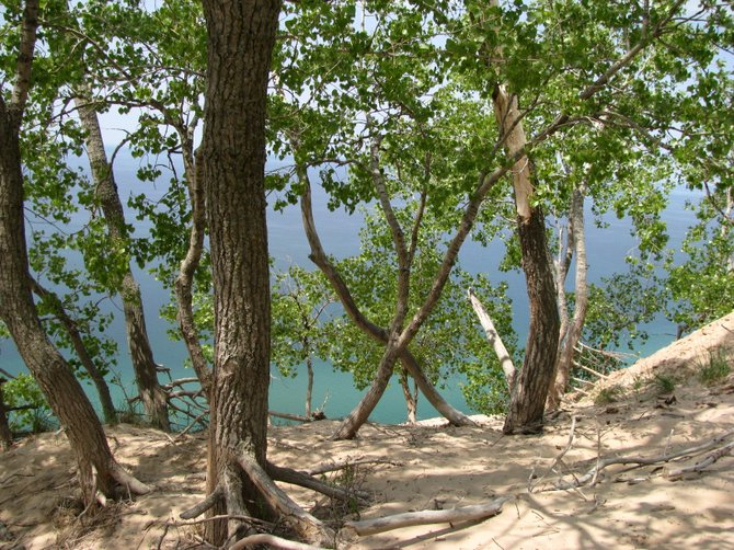 "A photo of a view of Lake Michigan through forested dunes taken by Denise Stoner titled ""Through the Trees."" This will be part of the exhibit running from July 31 until Sept. 11."