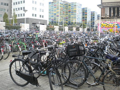 Endless bike racks fill a street in Leiden, a Dutch city with a population of about 117,000. The city of Syracuse has about 145,000 residents.