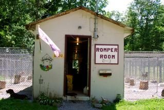 Estherville Animal Shelter is a no-kill, family run shelter.