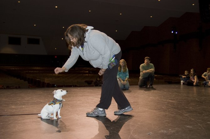 Joann Verderosa works with her dog Vinny as he auditions for the role of Sandy in the Ballston Spa School District&#39;s production of Annie.