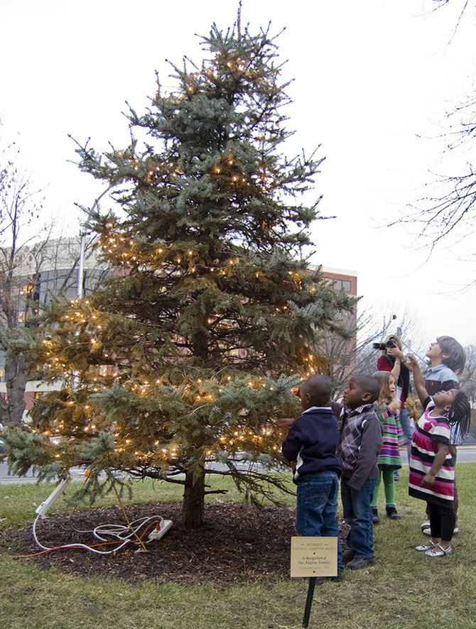 After the switch was flipped and the lights shined on the county's tree recognizing adoptive parents on Monday, Nov. 28, children rushed to see the lights up close.