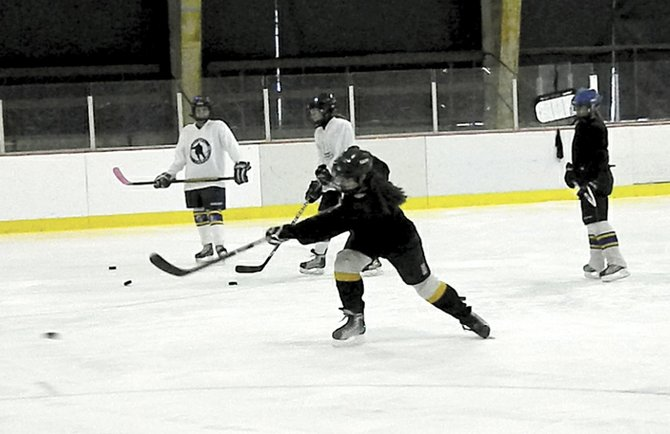The Skaneateles Lady Lakers varsity girls hockey team has grown in talent and community support in its three years as a sanctioned high school team, but remains a bit unknown in town. The team has two more home games to play before playoffs begin Feb. 1.
