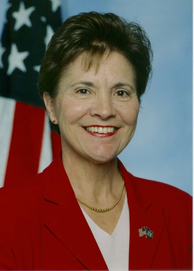 Assemblywoman Teresa Sayward, a Republican, has announced she will not seek re-election.