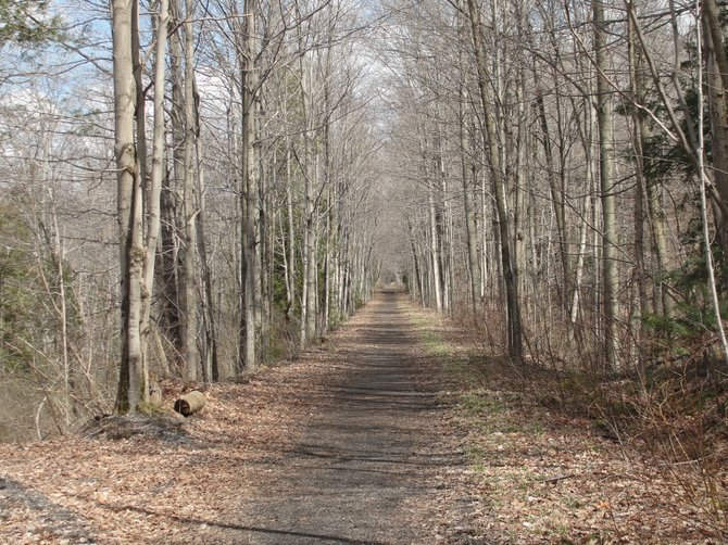 A straightaway view on the Gorge Trail in Cazenovia. Following the clearing of a 1.5-mile stretch of trail in Canastota this November, the NCTA filed a petition against the NYS Department of Parks, Recreation and Historic Preservation and an area snowmobile club to reverse damages.