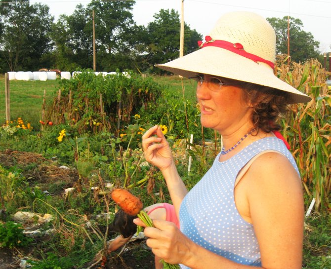 A gardener harvests carrots in Capital District Community Gardens Normanskill Farm Garden.