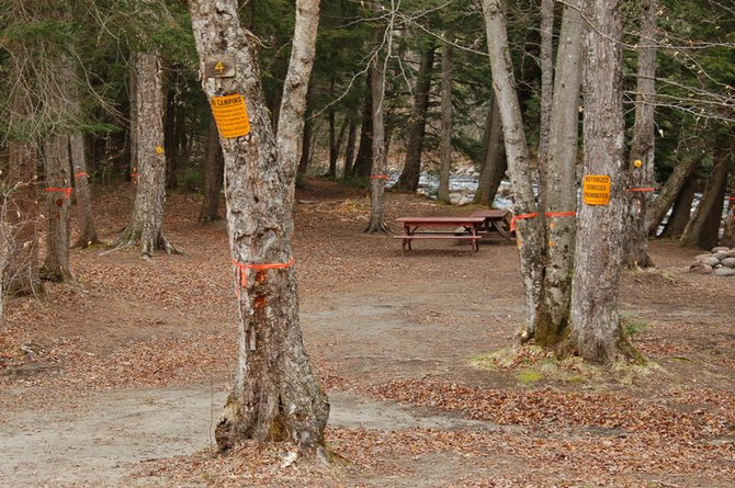 The state Department of Environmental Conservation has closed the several campsites next to the Boreas River on the North Woods Club Road in the town of Minerva. Here is one of those campsites. Unsafe trees in the campsites have been marked for removal, and they will be reopened as soon as resources are available.