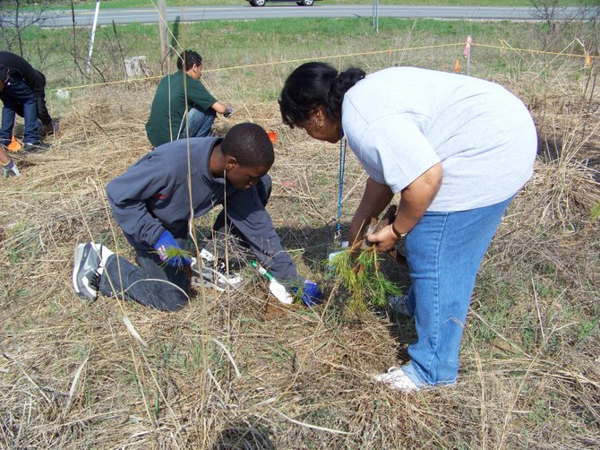 The community can help out with service projects at the Albany Pine Bush Preserve on Friday, Saturday and Sunday, April 20, 21 and 22 in honor of Earth Day.