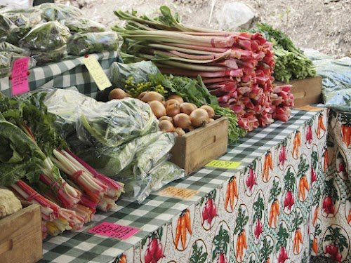 A wide variety of farm goods are plentiful at the Saratoga Famers Market and others throughout the Capital Region. Photo submitted.
