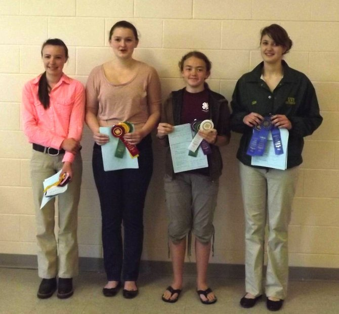 Vermont 4-Hers selected for the State 4-H Horse Judging Team proudly show off the ribbons they won in the State 4-H Horse Judging Contest in Jericho. They include, left to right, Kaelyn Jenny, Bethany Demuynck, Emily Campbell, and Jennifer Dickinson. 