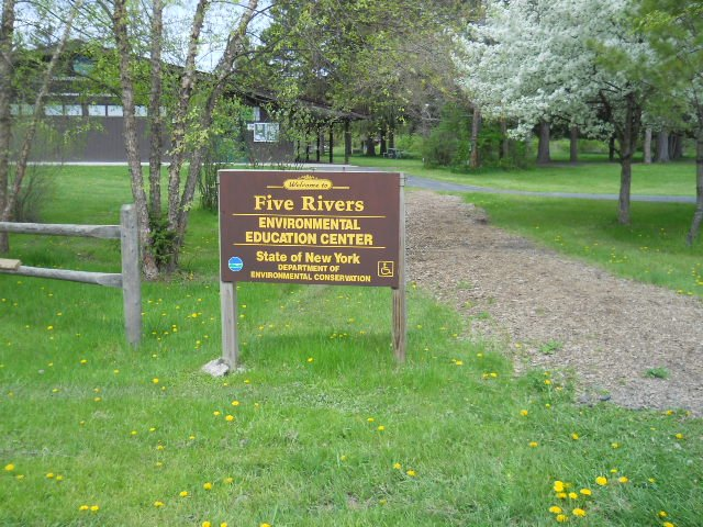 The Five Rivers Education Center in Delmar is celebrating its 40th anniversary on Saturday, June 16 with a family lawn party open to the public. 