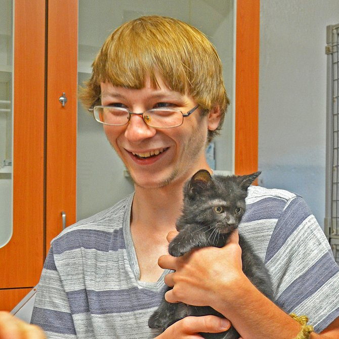 There were 132 adoptions made at this year's Feline Fest.
