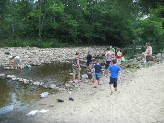Children attending the recent Mountain Days festival try to locate creatures in Stony Creek in an educational session led by naturalist Dean Moore.