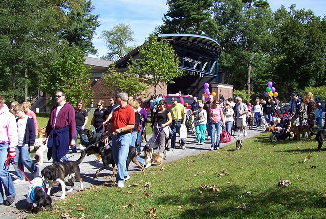 The Animal Protective Foundation is hosting its 20th annual Fireplug 500 Walk for Animals on Saturday, Sept. 8, from 9:30 a.m. to 1 p.m., at Central Park in Schenectady.