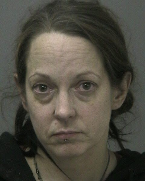 Susan J. Filion, 46, of Redford, was charged with Unlawful Manufacturing of Methamphetamine 3rd degree, a class D felony.