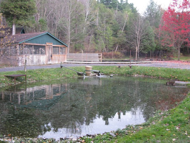 Perry Springs Park in Manlius will see some renovations by local Boy Scout Noah Chrysler.