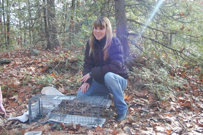 Victoria St. John sets a trap to catch a feral cat that appeared to have been abandoned by its owner. St. John runs the St. John&#39;s Feral Cat Fund. 