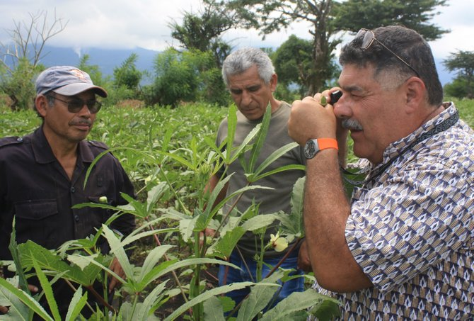 Three groups of local farmers, members of NOFA-Vermont, will spend several weeks in El Salvador as Winrock International volunteers providing training and technical assistance to help local farmers. Farmer-to-Farmer volunteer Alejandro Segarra-Carmona (on the right) shows local farmers how to apply sustainable pest control techniques to their crops.