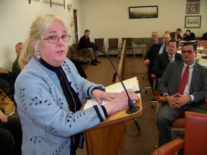 Citizen activist Joanne Gavin advises the Warren County Board of Supervisors Feb. 15 not to spend money on a study reviewing the impact of a casino in Lake George. Instead, she urged them to concentrate on other paths of economic development, like promoting upscale housing for high-tech professionals expected to work at GlobalFoundries in Malta within several years.