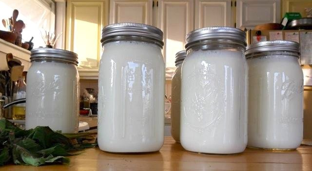 All Vermont raw milk farmers and homesteaders are invited to participate in Rural Vermont's raw milk meetings.