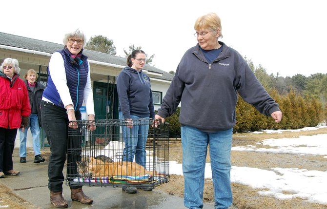 More than a dozen volunteers helped with the transport of 11 dogs and 36 cats to the new North Country SPCA shelter in Elizabethtown on Feb. 28.