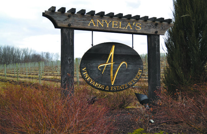 Anyela's Vineyards is located off of Route 41A in Skaneateles.