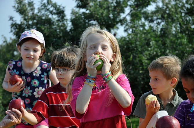 After being shut out of pick-your-own apple excursions last year, growers say local apple lovers should find a more traditional fall bounty this year.