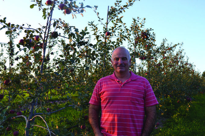 Bill Adams stands in the apple orchard in his backyard. Adams Acres spans 2.5 acres and offers eight varieties of apples throughout the picking season, which normally lasts until the end of October.