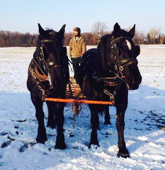Greyrock Farm CSA founder Matt Volz uses draft horses to plow his fields. He said it is a personal preference as well as an environmental ethic not to use fossil fuels on the farm.