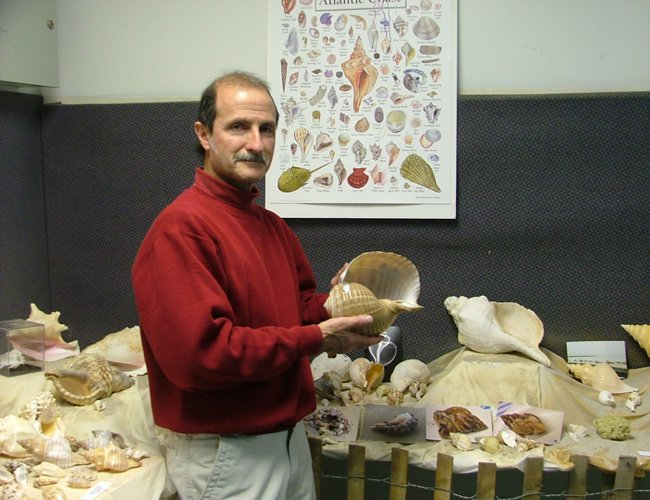 """Collector and curator Ron Glasser stands among the shells in his """"Jewels of the Sea"""" exhibit at Discovery Hall in Troy."""