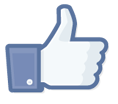 FacebookLikeIcon